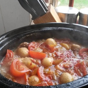 Slow cooked chicken with baby potatoes, tomato and onion