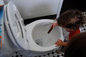 children love to put things in the toilet and then try to get them out again