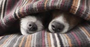 Keep warm!